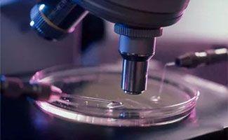泰国试管婴儿胚胎培养液的成分有哪些