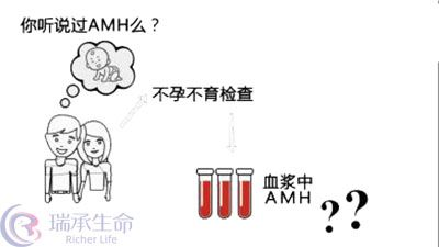 什么是AMH值