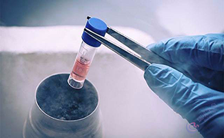 泰国试管婴儿冷冻胚胎的原因是什么?