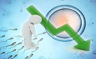 试管婴儿如何解决高龄男性精子问题?