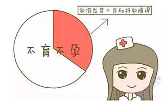 排卵障碍做试管婴儿的费用是多少钱?
