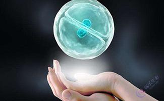 试管婴儿胚胎移植的过程是怎么样的?