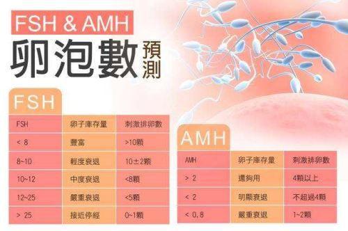 AMH和性激素六项检测卵巢储备.jpg