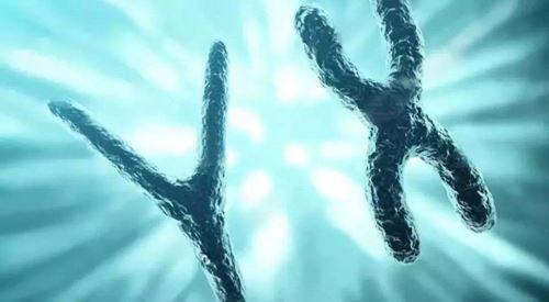 染色体异常.jpg