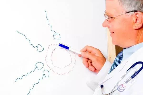 试管婴儿过程各步骤详细讲解!一文看懂试管婴儿助孕技术