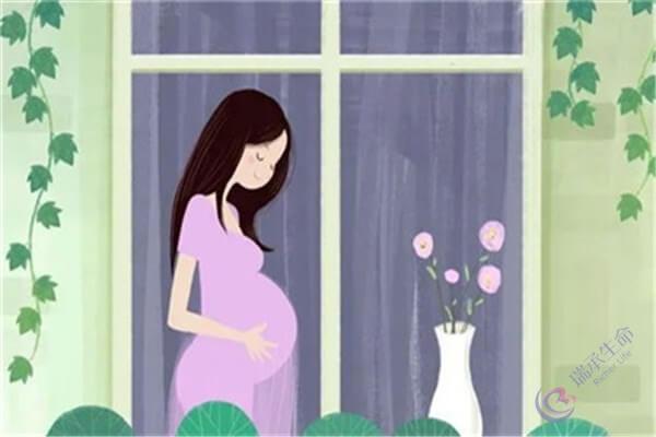 卵巢储备功能低下该如何备孕?又能不能选择试管助孕?