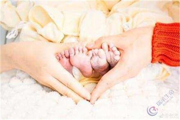试管婴儿技术生双胞胎的概率高吗?步骤是什么?