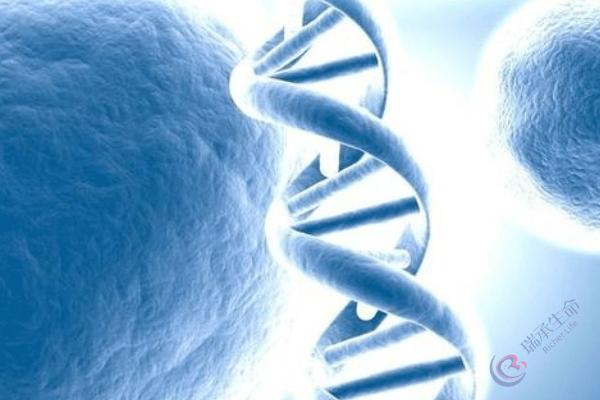 囊胚培养适合所有试管助孕夫妇吗