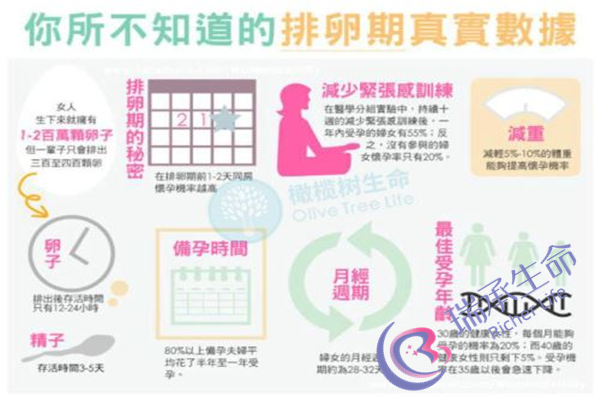 深圳中山泌尿试管费用是多少呢
