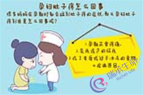 深圳北大医院试管经历 做试管婴儿要经历哪些环节?